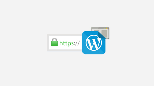 free wordpress ssl